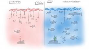 Red Ocean - Blue Ocean - AKTIA Solutions